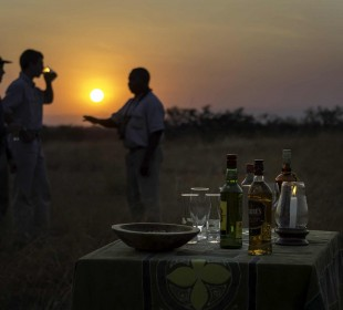 7 Days South Luangwa and Victoria Falls Safari