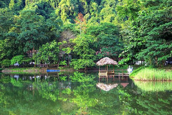 Cuc Phuong National Park