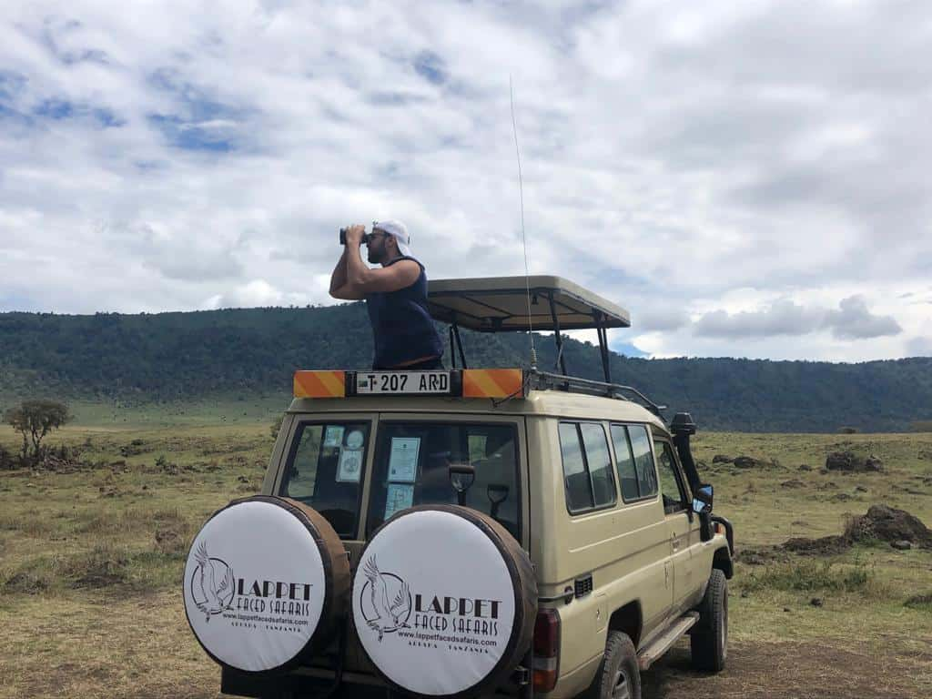 Safaris jeep