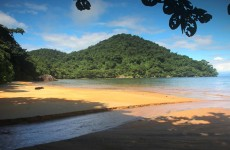6-Day Madagascar Masoala Wildlife Tour