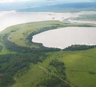 5-Day Masai Mara, Lake Nakuru, Lake Naivasha Magical Wildlife Safari