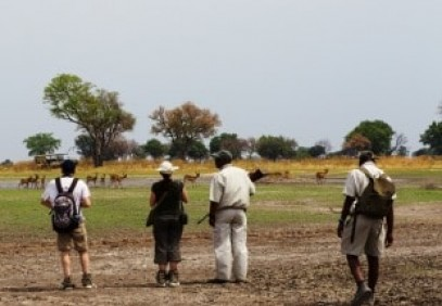 4 Days Botswana Walking Safari