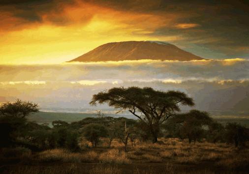 Kilimanjaro Climbing @burigi Chato Safaris (21)
