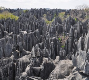 10-Day Tsiribihina River Trip & Tsingy of Bemaraha