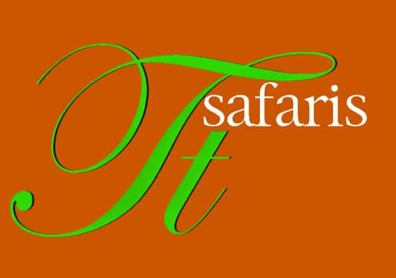 The Insight Tanzania Safaris