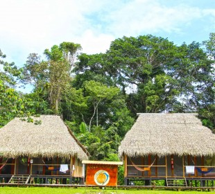 5-Day Cuyabeno Jungle Trip