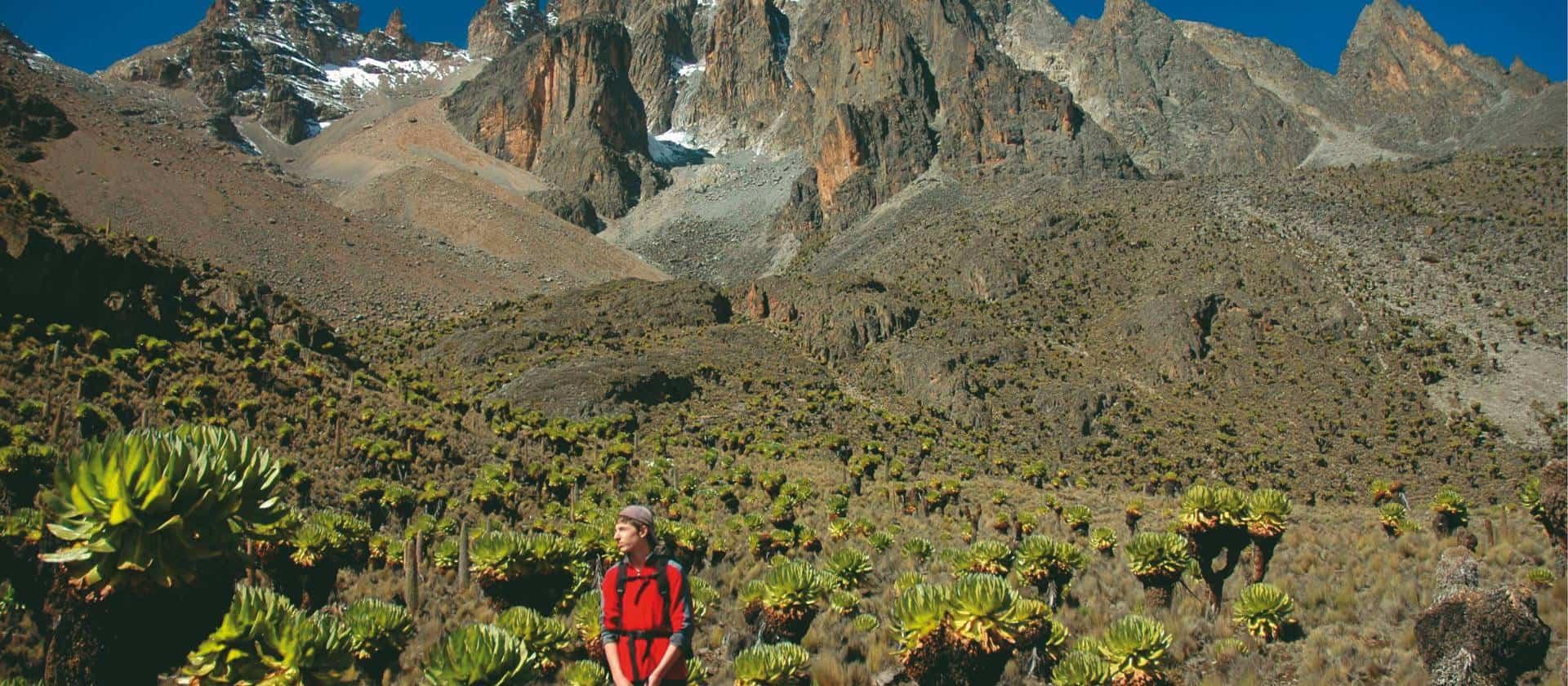 Mt Kenya Trek 275432 1920px 16x7