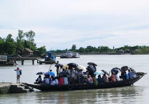 Sundarban 7