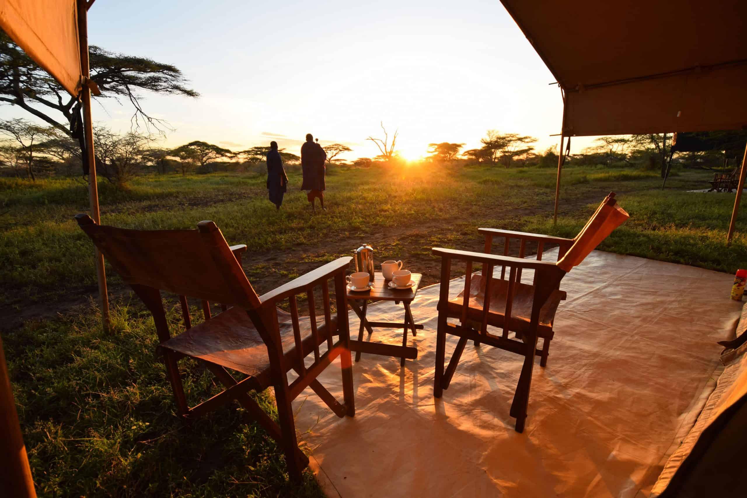 African Safari Tanzania Accomodation Holidays Safari Park Tour Ndutu Serengeti Center Gallery 13 4496x3000