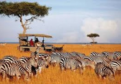 3-Day Camping Safari in Masai Mara National Reserve