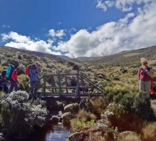 5-Day Mount Kenya Climbing Safari