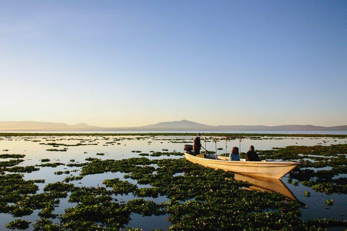Lake Naivasha 2
