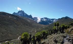 Mt Kenya 14