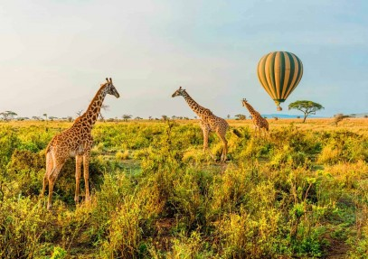 Reasons to Visit Tanzania in the Summer, Monsoon and Winter