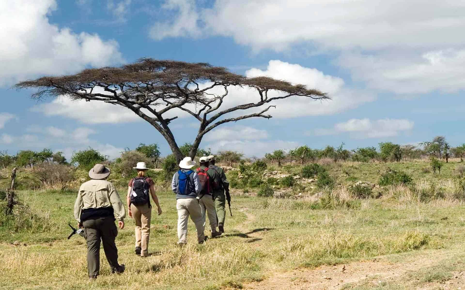 Walking Safari In East Africa Tanzania
