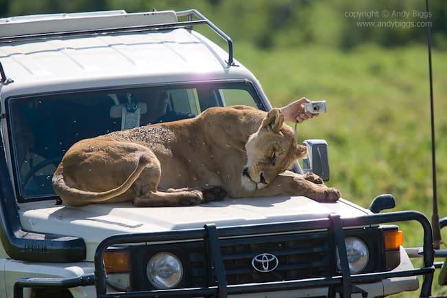 20070126 155822 Ngorongoro027