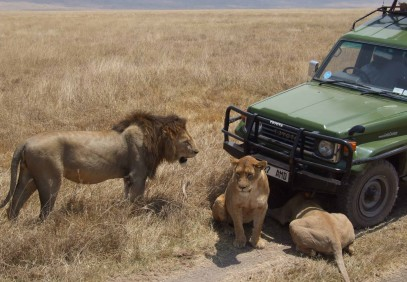4-Day Tarangire, Ngorongoro & Serengeti National Park Safari