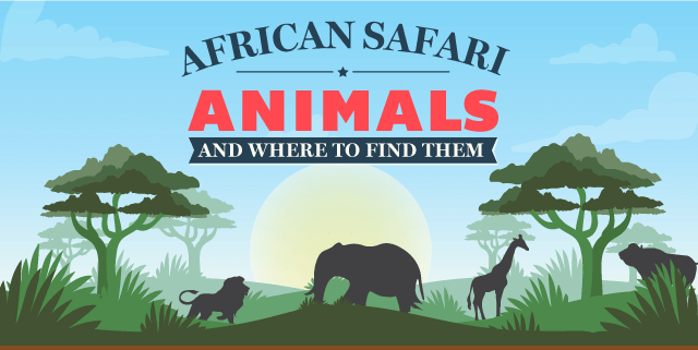 African Safari Animals and Where to Find Them [Infographic]