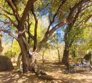 9-Day Botswana Classic Camping Safari