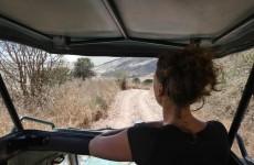 2-Day Tanzania Safari Tarangire & Ngorongoro Crater