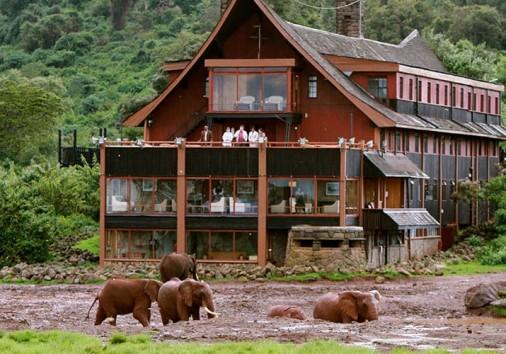 The Ark Lodge11