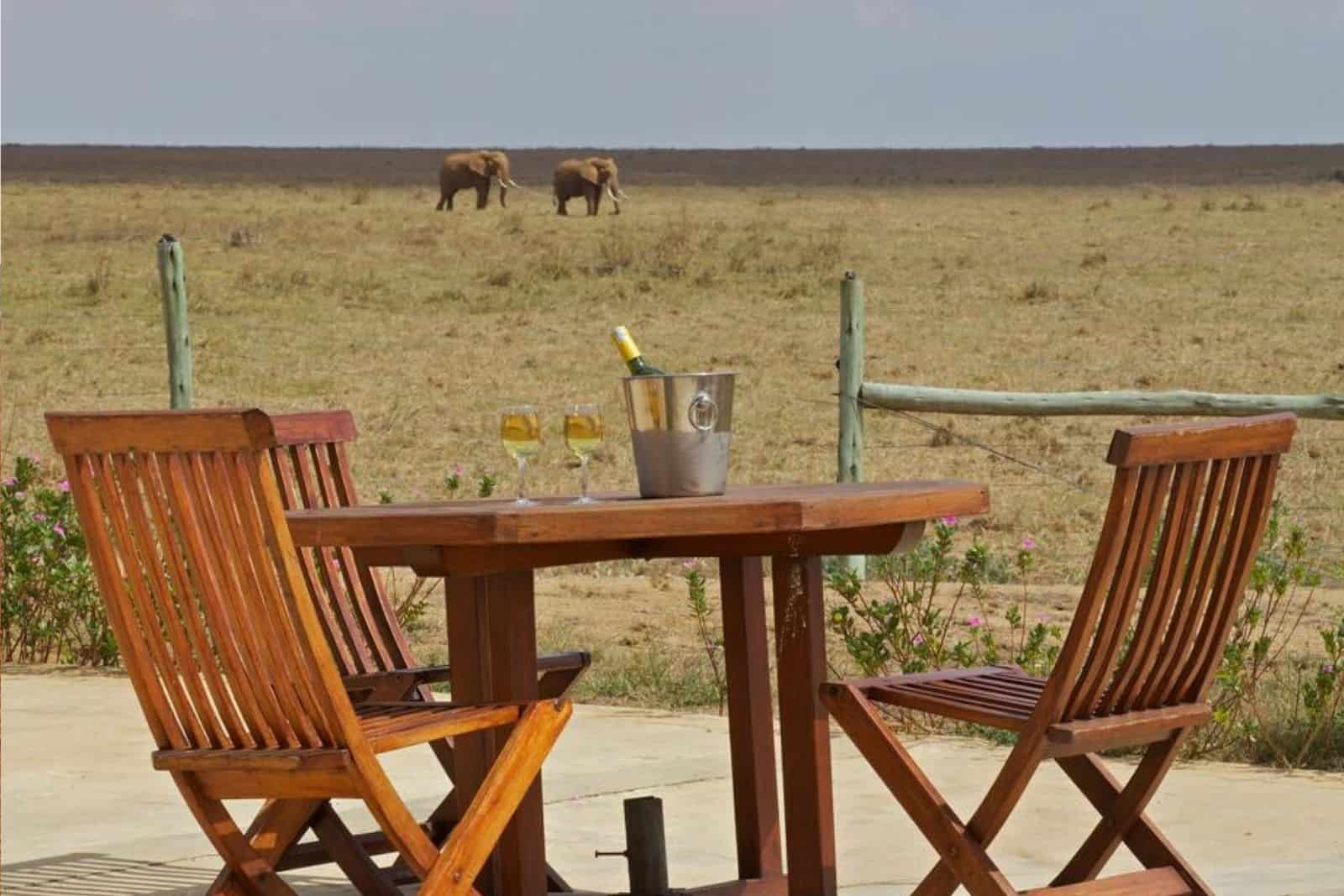 Tsavo East National Park Safari