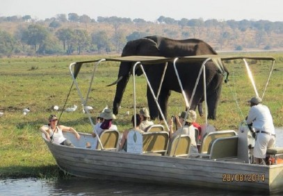 Vic Falls to Chobe National Park Day Trip