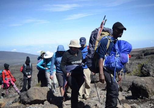 Hiking Kilimanjaro Via Lemosho Route