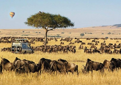 Kenya – Frequently Asked Questions