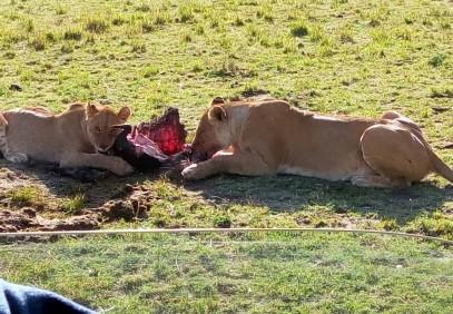 7-Day Kenyan Camping Safari