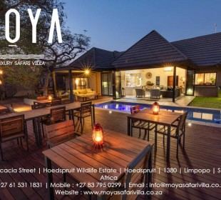 6-Day Moya Safari Package