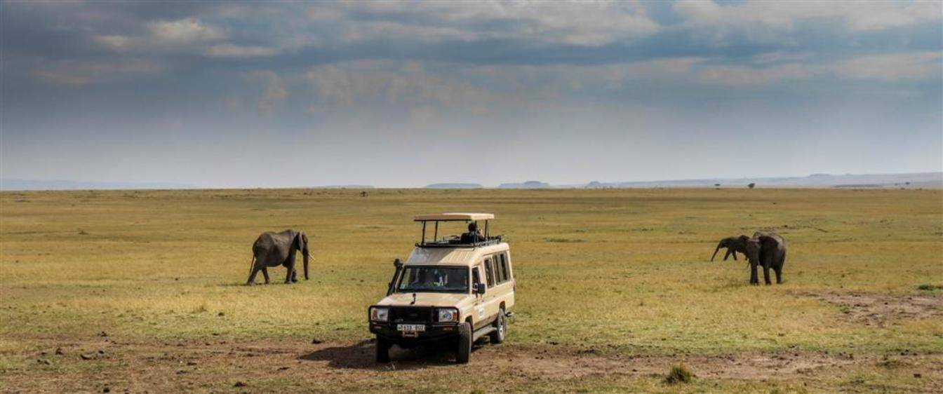 Closed Game Drive Vehicles