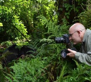 4-Day Gorilla Trekking