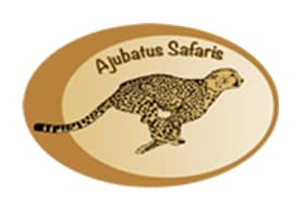 Ajubatus Safaris