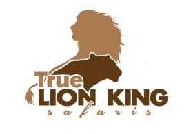 True Lion King Safaris