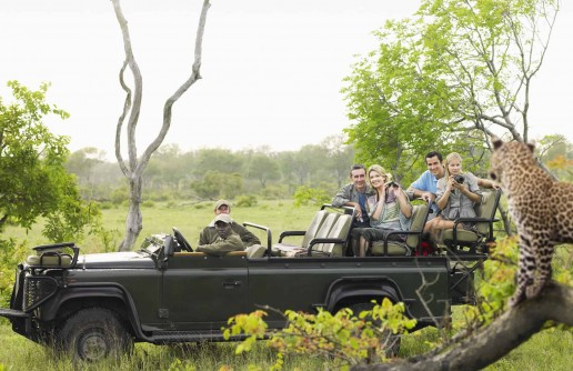 Traits to Look for in a Guide Before Going on a Safari Tour
