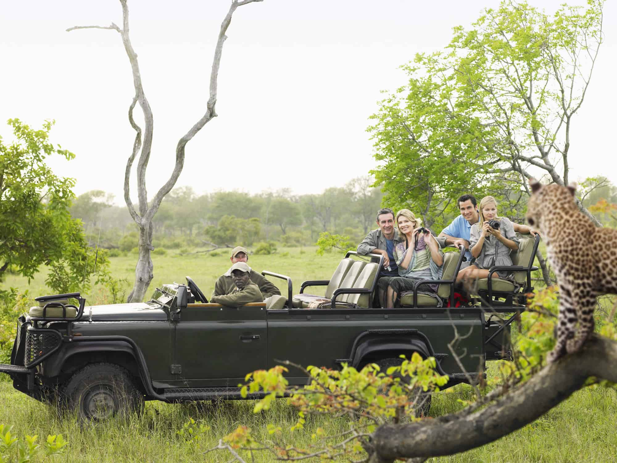 How to Choose a Safari For You