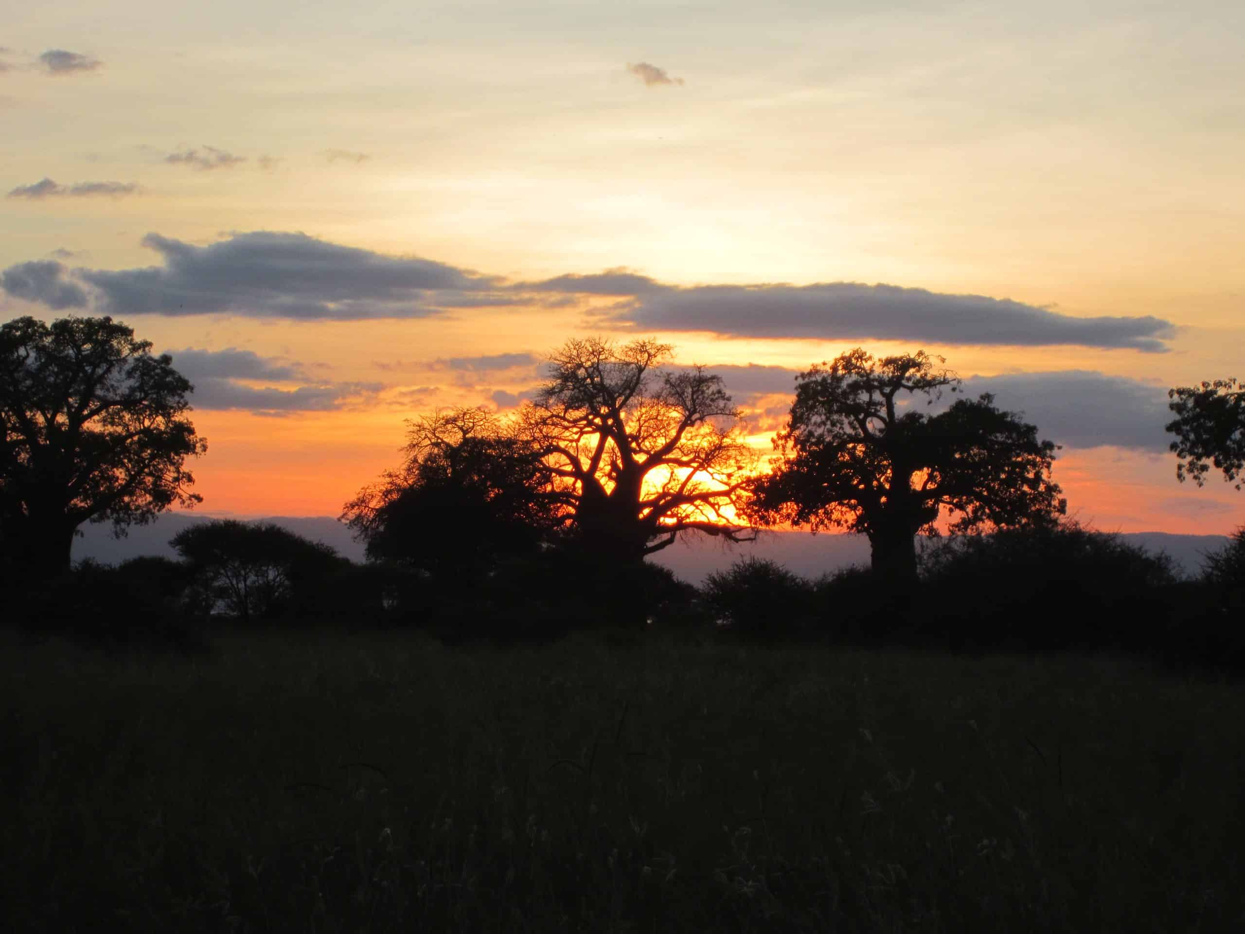 8 Day Tanzania Adventure Safari #2
