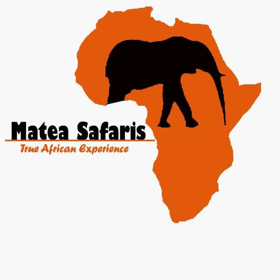 Matea Tours & Safaris