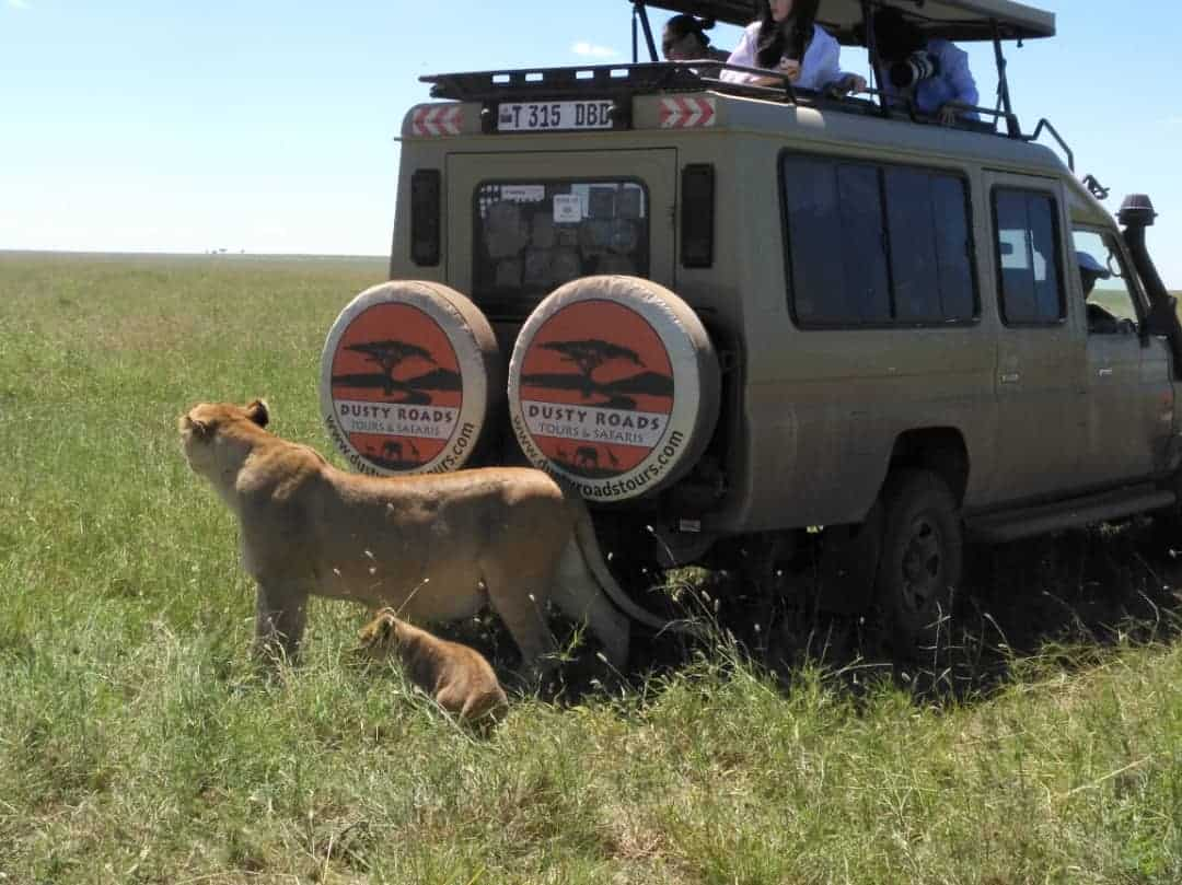 6 Day Tanzania Classic Safari #1