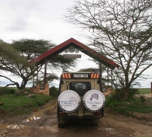 8-Day Serengeti Migration Safari