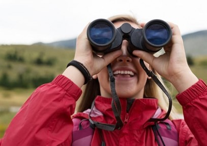 Tips for Beginner's Bird Watching to Have a Memorable Experience