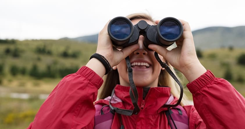 Bird Watching Tips for Beginners for a Memorable Experience