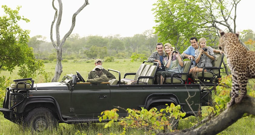 Traits to Look for in a Safari Guide Before Going on an Adventure