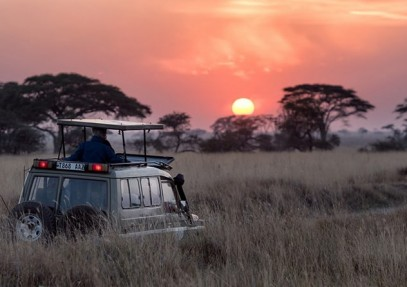 Top 5 African National Parks Safari Trips to Take