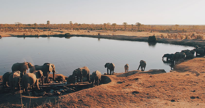 Safari Deal Top African Parks 06