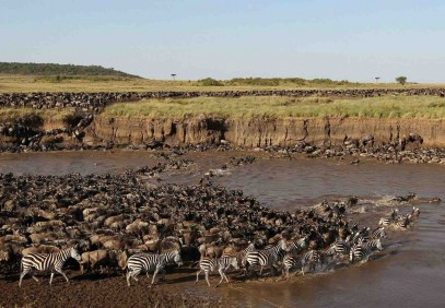 6-Day Serengeti Migration Safari
