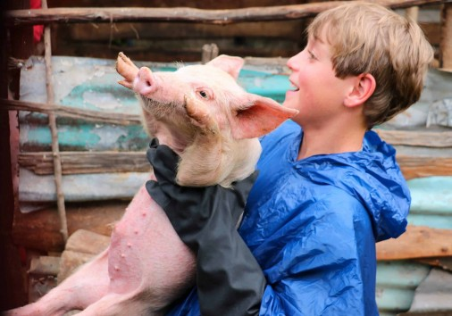 8. Go Granny Go! One Horizion Spare Day In Nairobi Safari The Life Changing Moment When A Young Traveller Hands A Piglet To A Grandma