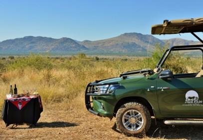 Pilanesberg Big Five Safari
