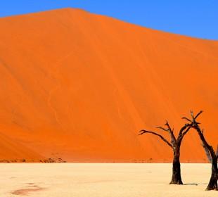 7-Day Namibia Fly-In Luxury Safari